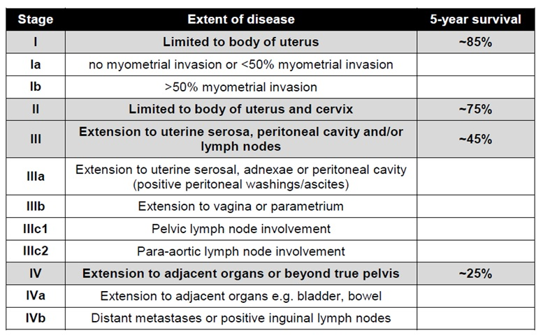 endometrial cancer prognosis by stage)