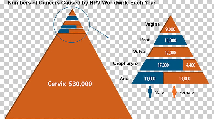 hpv vaccine and head and neck cancer)