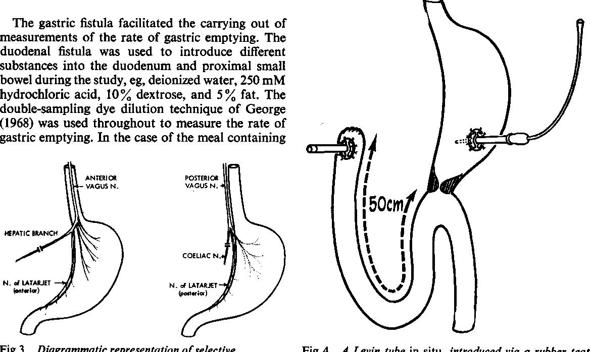 gastric cancer vagotomy hpv high risk dna (non 16/18) detected