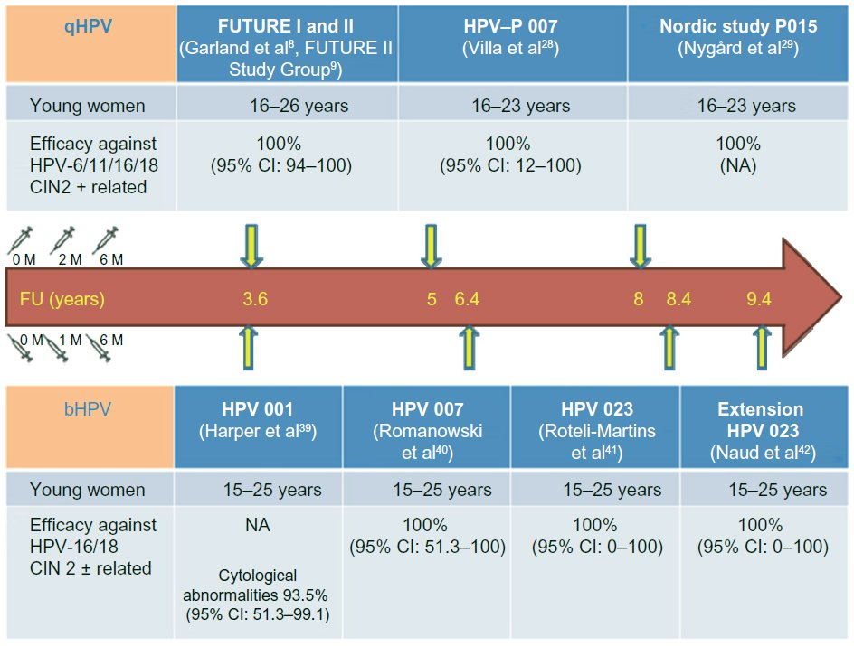 human papillomavirus vaccination effectiveness