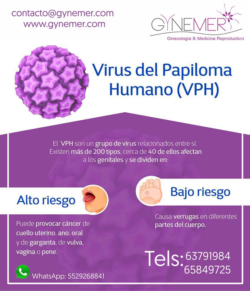 papiloma ginecologia)