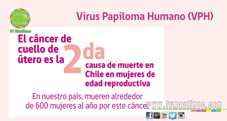 papiloma humano chile